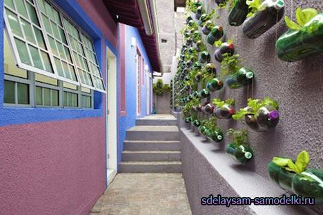 Стенах разместить вертикальный сад